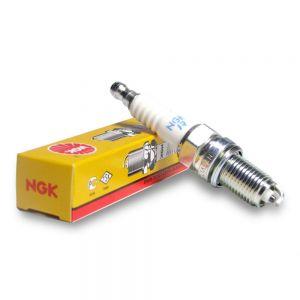 NGK Spark Plug (B10EG)