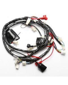 Wiring Loom Harness for Sinnis Harrier 125