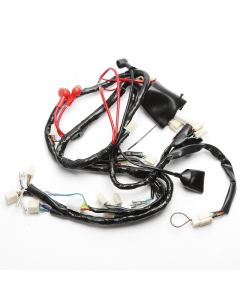Wiring Loom Harness DRL for Sinnis Harrier 125